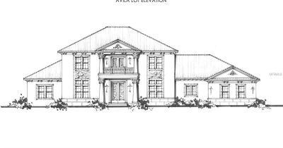 Tampa Single Family Home For Sale: 16503 Avila Boulevard