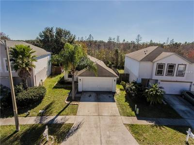 Wesley Chapel Single Family Home For Sale: 30446 Birdhouse Drive