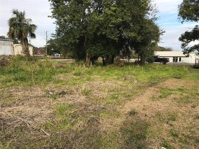 Plant City Residential Lots & Land For Sale: 301 S Daniels Street