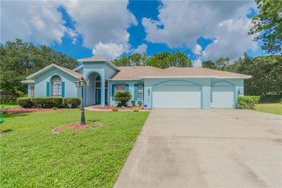 Beverly Hills, Citrus Hills, Citrus Springs, Crystal River, Dunnellon, Floral City, Hernando, Homassa, Homosassa, Inverness, Lecanto, Port Charlotte Single Family Home For Sale: 34 Greentree Street