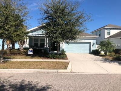 Apollo Beach Single Family Home For Sale: 551 Manns Harbor Drive