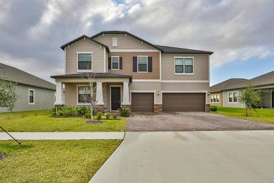 Riverview Single Family Home For Sale: 13439 White Sapphire Road