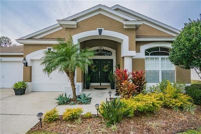 Wesley Chapel Single Family Home For Sale: 5741 Riva Ridge Drive