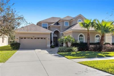 Land O Lakes Single Family Home For Sale: 2816 Sunny Ledge Court
