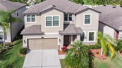 Riverview Single Family Home For Sale: 11618 Palmetto Pine Street