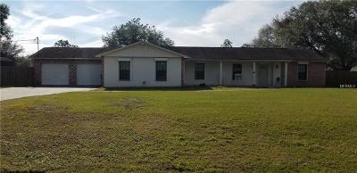 Plant City Single Family Home For Sale: 4503 Charro Lane
