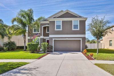 Ruskin Single Family Home For Sale: 2415 Dakota Rock Drive