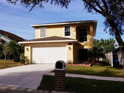 Tampa Single Family Home For Sale: 4708 Dunquin Place