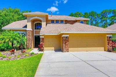 Tampa Single Family Home For Sale: 10469 Greendale Drive