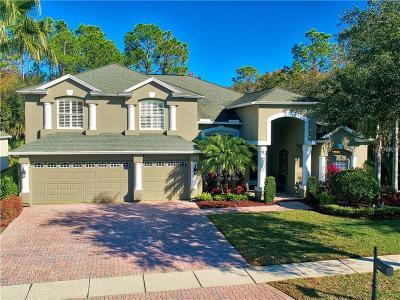 Tampa Single Family Home For Sale: 5038 Ashington Landing Drive