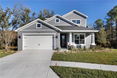 New Port Richey, New Port Richie Single Family Home For Sale: 3968 Watson Drive