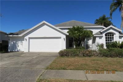 Wesley Chapel Single Family Home For Auction: 28751 Thomasville Place