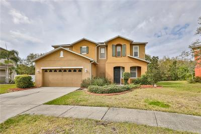 Gibsonton Single Family Home For Sale: 9101 Kentucky Day Court
