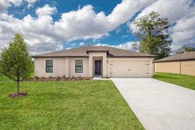 Deltona Single Family Home For Sale: 3342 Dewberry Drive