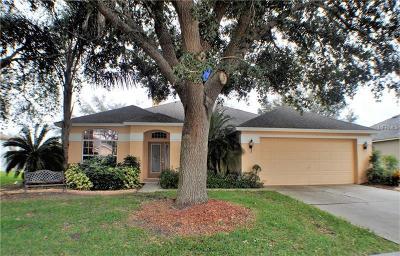Valrico Single Family Home For Sale: 3806 Triple Jump Street