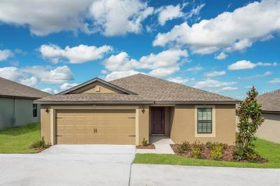 Deltona Single Family Home For Sale: 2076 Newmark Drive