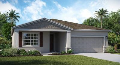 Lake County, Orange County, Osceola County, Seminole County Single Family Home For Sale: 2372 Crescent Moon Street