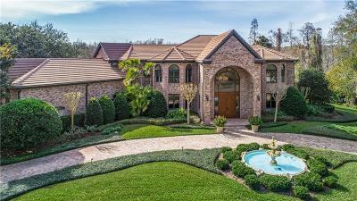 Tampa Single Family Home For Sale: 16305 Millan De Avila