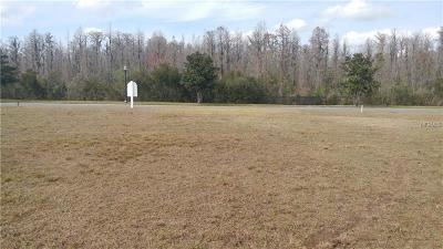 Land O Lakes Residential Lots & Land For Sale: 20401 Lace Cascade Road