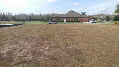 Land O Lakes Residential Lots & Land For Sale: 20228 Lace Cascade Road