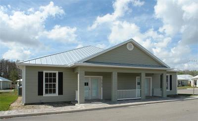 Hillsborough County Commercial For Sale: 17824 N 41st Highway