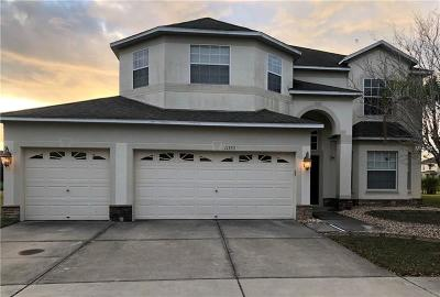 Hernando County, Hillsborough County, Pasco County, Pinellas County Single Family Home For Sale: 11353 Callaway Pond Drive
