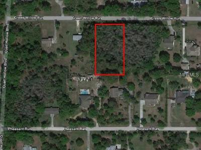 Wesley Chapel Residential Lots & Land For Sale: Green Willow Run