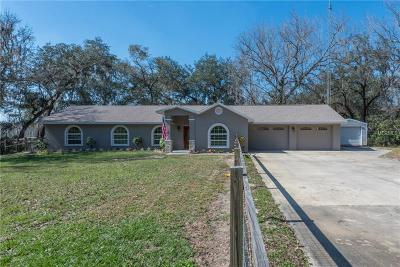 San Antonio Single Family Home For Sale: 13335 Mahoney Road