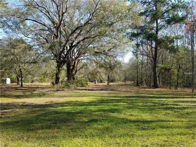 Land O Lakes Residential Lots & Land For Sale: 11325 Grovewood Boulevard