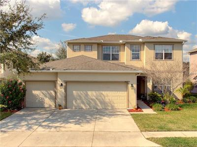 Wesley Chapel Single Family Home For Sale: 4857 Pointe O Woods Drive