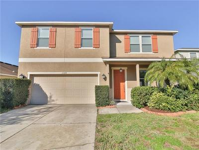 Riverview Single Family Home For Sale: 11145 Running Pine Drive