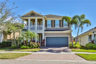 Apollo Beach Single Family Home For Sale: 6833 Park Strand Drive