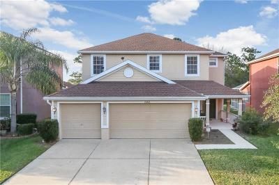 Tampa Single Family Home For Sale: 20512 Sultana Court