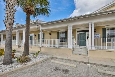 Hillsborough County Commercial For Sale: 443 Apollo Beach Boulevard #D