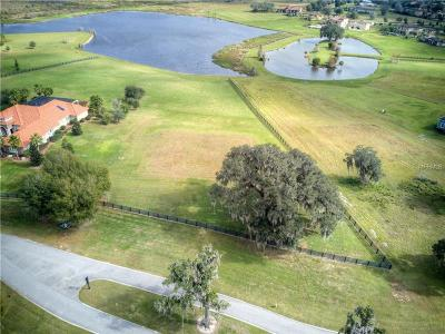 Thonotosassa Residential Lots & Land For Sale: 10729 Osprey Landing Way