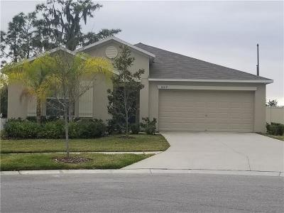 Wimauma Single Family Home For Sale: 16519 Myrtle Sand Drive