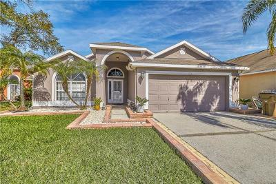 New Port Richey Single Family Home For Sale: 7231 Sharpsburg Boulevard