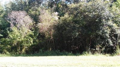 Pasco County Residential Lots & Land For Sale: St Joe Road