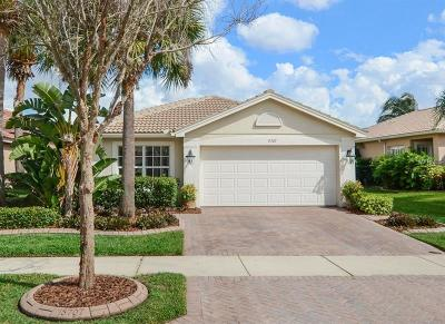 Wimauma Single Family Home For Sale: 15707 Crystal Waters Drive