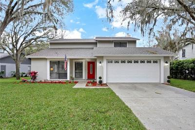 Tampa Single Family Home For Sale: 16642 Vallely Drive
