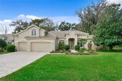 Dade City Single Family Home For Sale: 13133 Grand Traverse Drive