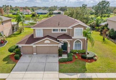 Hillsborough County, Pasco County, Pinellas County Single Family Home For Sale: 13009 Carlington Lane