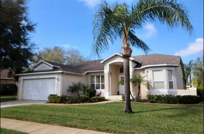 Tarpon Springs Single Family Home For Sale: 1049 Sawgrass Drive