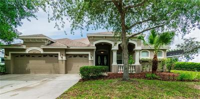 Tampa Single Family Home For Sale: 6615 Thornton Palms Drive