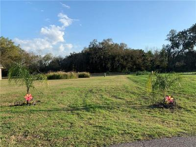 Plant City Residential Lots & Land For Sale: 3017 Beautiful Creek Lane