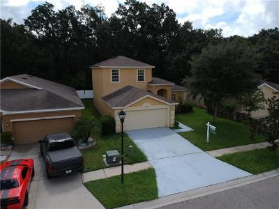 Hillsborough County Single Family Home For Sale: 8604 Tidal Breeze Drive