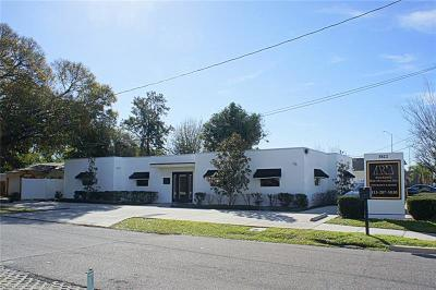 Tampa Commercial For Sale: 3822 S Himes Avenue