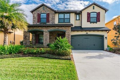 Wesley Chapel Single Family Home For Sale: 4118 Canino Court