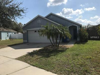 Ruskin Single Family Home For Sale: 733 Cristelle Jean Drive