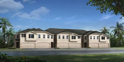 Lutz FL Townhouse For Sale: $302,977